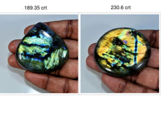 Labradorite Specimens -  51 mm x 51 mm & 49 mm x 50 mm - 419,95 crt (2)