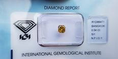 Natural Diamond - 0.54 ct - Radiant cut - Natural Fancy Intense Orangy Yellow SI1