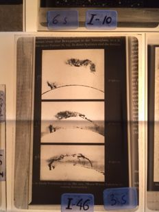 Glass negatives Theme Sun 15 x