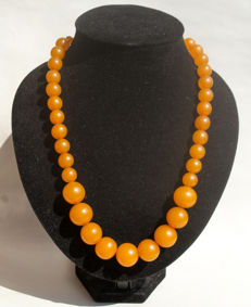 Baltic Amber necklace of butterscotch, caramel colour, 70 gram