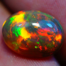 Beautiful Solid Semi Black Welo Opal -12.70 x 9.53 x 5.30 mm - 2.92ct