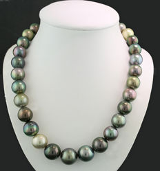 An imposing multi-coloured Tahitian pearl necklace 12 - 15 mm in magnificent lustre ---No reserve---