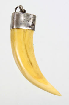 Pendant made of a wild boar tusk and silver