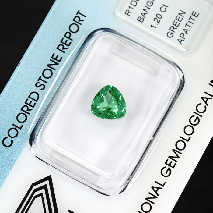Apatite - 1.20 ct No Reserve Price