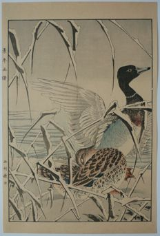 Beautiful woodblock print by Imao Keinen (1845 - 1924) - A pair of wild ducks in the snow - Japan - 1892