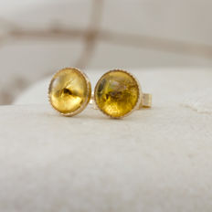 Handmade 9K gold and Baltic Amber stud earrings with fossil insects