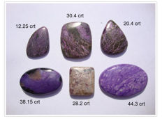 Charoïte and Purpurite Cabochons - 173.70 crt - (6)