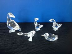 Swarovski - Goose mother - Goose Tom - Goose Harry - Goose Dick - Duck with silver beak.