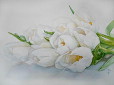 Smetanina Mary - White Tulips