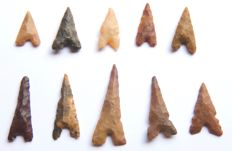 Lot with 10 Neolithic arrowheads - 19 - 46 mm (10)