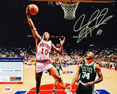 Dennis Rodman #31 / Chicago Bulls Signed Photo 20x25 cm - with Certificate of Authenticity PSA/DNA