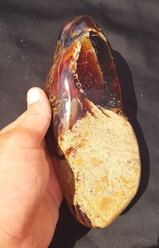 Large piece of Zebra/Red Sumatran Amber with inclusions - 200 x 97 x 50mm - 580gm