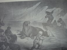 Llisha Kent Kane - Arctic explorations the second Grinnell expedition  in search of Sir John Franklin 1856,1857,1868 - 1971