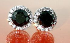 Ear studs set with black diamonds & 32 brilliants, 1.20 ct in total *** No reserve price ***