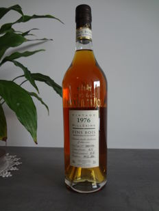 Cognac Maxime Trijol Fins Bois 1976, 1 of only 480 bottles