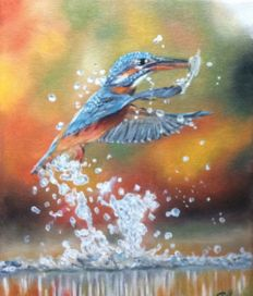 Christien Velthuizen -  Kingfisher