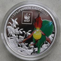 "Tanzania - 100 shillings - WWF coin ""Lady Slipper Orchid"""