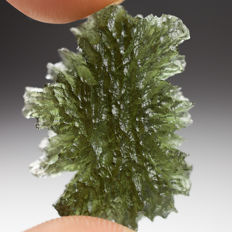 Fine structured Tektite - Moldavite - 29 x 22 mm - 4,8 g