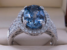 IGI certified – gold cocktail ring with untreated sapphire & diamonds 5.68 ct **No Reserve price**