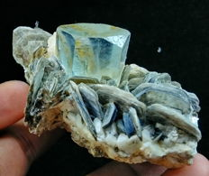 Terminated Natural Blue Color Aquamarine crystal on mica - 90x70x40mm - 173gr