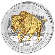 "Canada - 5 dollars 2013, ""Wildlife Bison"", partially gold-plated - 1 oz of silver"