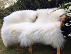 Pair of fine, extra large, natural white sheep skins - Ovis aries - 120 x 75 cm