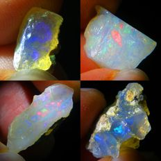 Four Top Lot of Colour Play Effect Welo Opals Ethiopia - 24.11 ct (4)