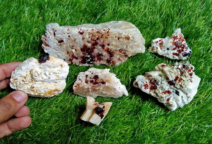 Lot of Natural & Unheated Red Garnet crystal Specimens  - 704gm (6)