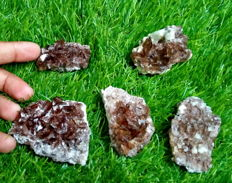 Terminated Gemmy Top Quality Five Pices of Brown Axinite Mineral Specimen Lot - 61 x 55 x 22 mm - 1049.80 ct (5)