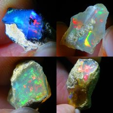 Four Top Lot of Colour Play Effect Welo Opals Ethiopia - 21.07 ct (4)