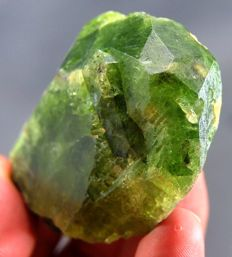 New Find - Perfect Terminated Green Diopside Crystal  - 72 x 50 x 23 mm - 137 gm