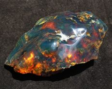 Natural, half polished green blue Mexican amber - 12 x 5.5 x 4.5 cm - 94 g