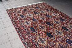 Original & Amazing Persian Iran Old Bachtiar Handknotted 315x210cm around 1960