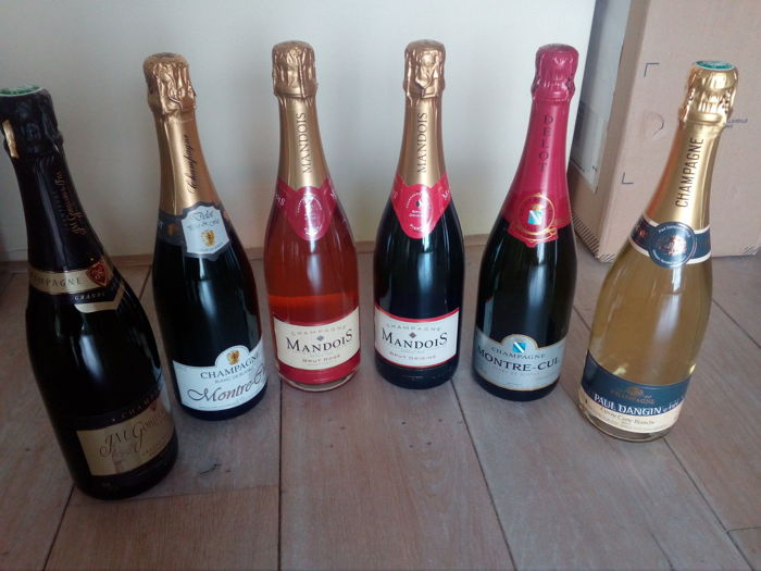 Champagne Small Grower collection - 6 bottles including Gobillard, Mandois, Delot & Paul Dangin