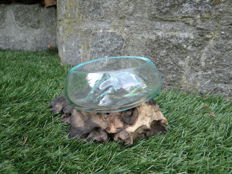Apache tear - glass bowl on a wood stump - 18x16x10cm cm