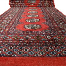 "Bukhara – 310 x 78 cm – ""Finely knotted Persian runner in coral red – In beautiful condition"" – With certificate"