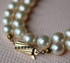Vintage Sea/Salty Akoya pearl necklace of approx Ø 8mm enchanted with a 14Kt gold clasp set with 6 small Sapphires