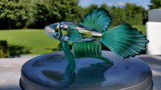 Swarovski - Siamese fighting fish green
