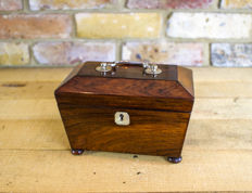 A William IV rosewood tea caddy - England - circa 1830