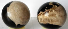 2 large spheres of petrified wood - 90 mm - 1.5 kg