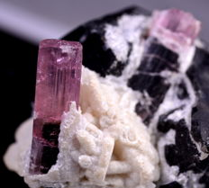 Fine Tourmaline Crystal And Specimen From Afghanistan. 56 x 42.8 x 35.9 mm - 393 ct