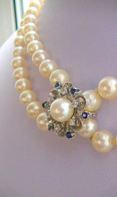 7.5 mm Akoya pearl necklace with sapphire diamond shortener clasp in 585 white gold - Pforzheim