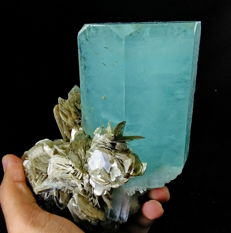 Huge Terminated Natural Sky Blue Color Aquamarine Mineral Crystal on Muscovite Mica - 151x123x70 mm - 1444 gm