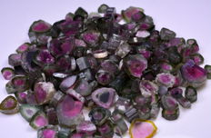 Natural Watermelon Tourmaline Polished Slices Lot. - 476ct