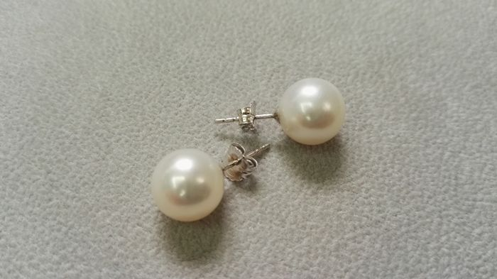 Earrings - Australian pearls (10 mm) - 18 kt white gold