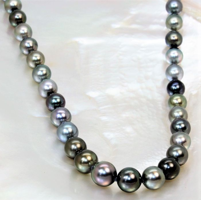 Gorgeous round Tahitian black pearl necklace Ø 8.2 x 10.5 mm - 43 pearls