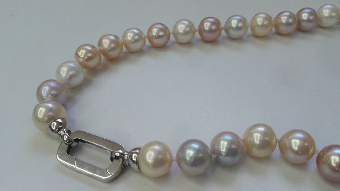 Necklace made of 11-12 mm cultured multi-coloured pearls - No reserve