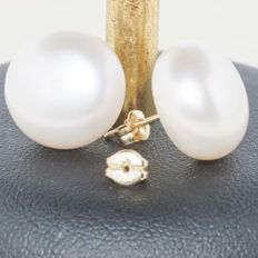 18 kt gold earrings with cultured pearls, 14 mm