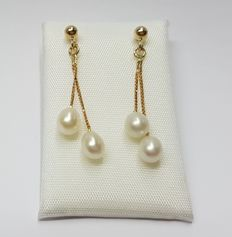 14k Gold ear studs with cultured droplet-shaped pearls, length 27 mm