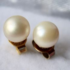 14kt. Gold vintage earrings of a good quality with see / salty Akoya pearls and golden locks.